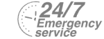 24/7 Emergency Service Pest Control in Parson's Green, SW6. Call Now! 020 8166 9746